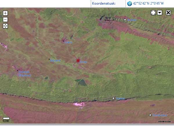 Landsat satelite irudian Ergoienako kontzeju guztiak eta inguruko mendiak.