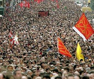 1007_nafarroa-manifestazioa
