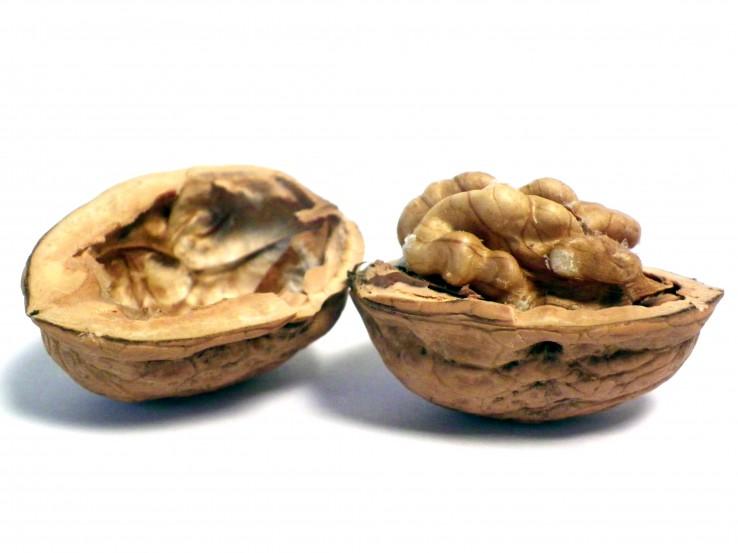 irekita-argazkia1
