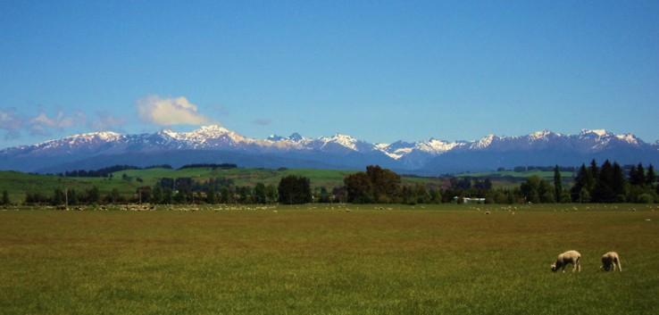 HOBBITONen egon nintzenekoa... (Matamata-New Zealand)