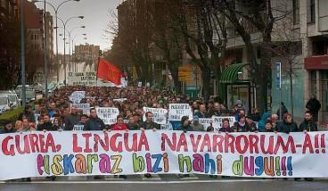 Diario de Navarra, D eredua Nafarroa osoan eskaintzearen alde