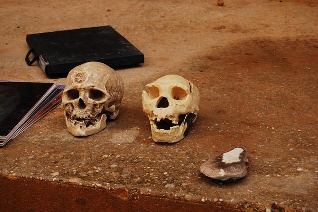 Atapuercako ikerketa genetikoaren harira, Ricardo Gómezek