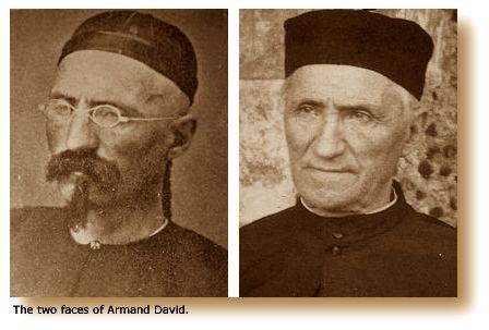 Armand David
