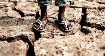 Errefuxiatu klimatikoak