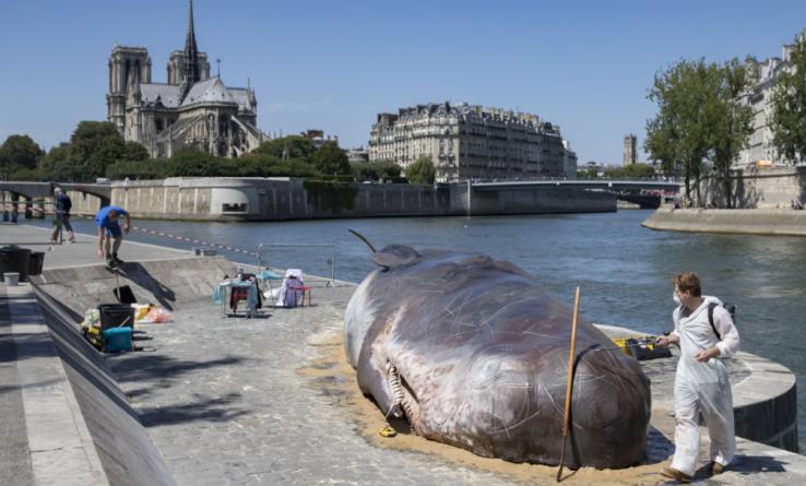 Parisen hil den katxaloteaz
