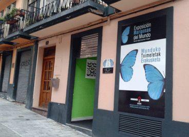 Euskal Herriko museo bitxienak - Munduko Tximeleten museoa