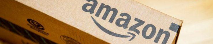 Zer daki Amazonek gutaz?