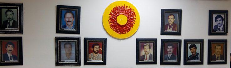 Lan-desgaitzea Kurdistanen