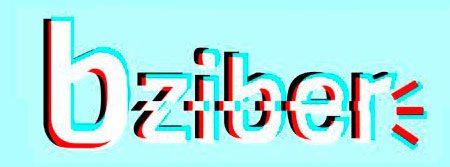 Bizkaiko 11 eta 13 urte bitartekoentzako sareko erronka digitala, BZIBER