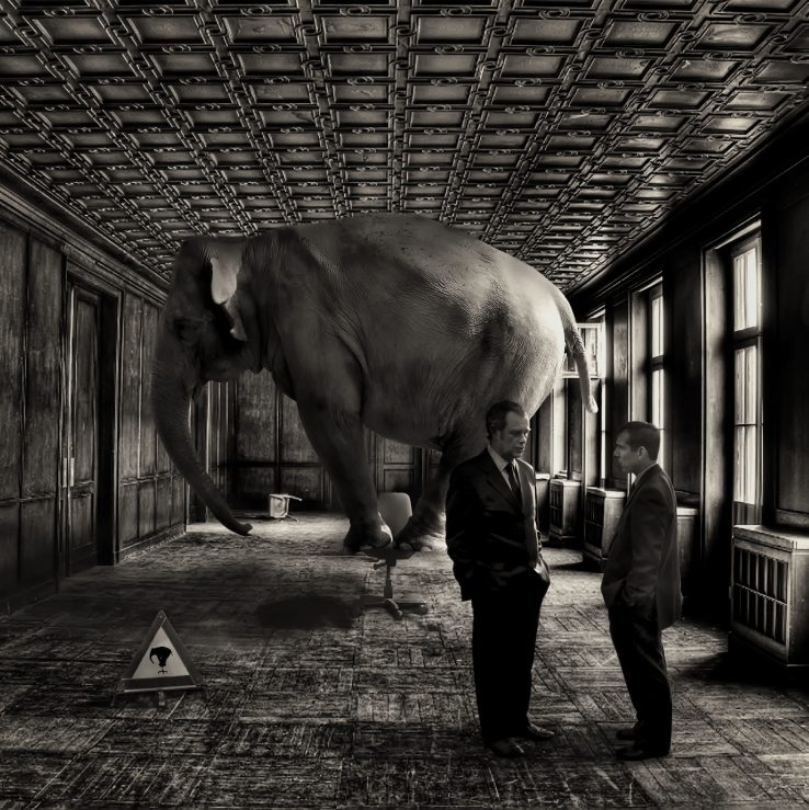 Adi elefanteari