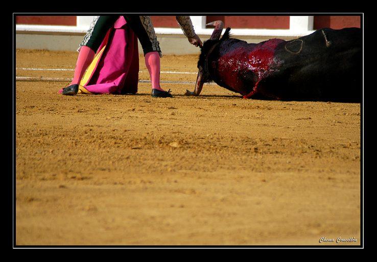 Peñak eta animalien tortura