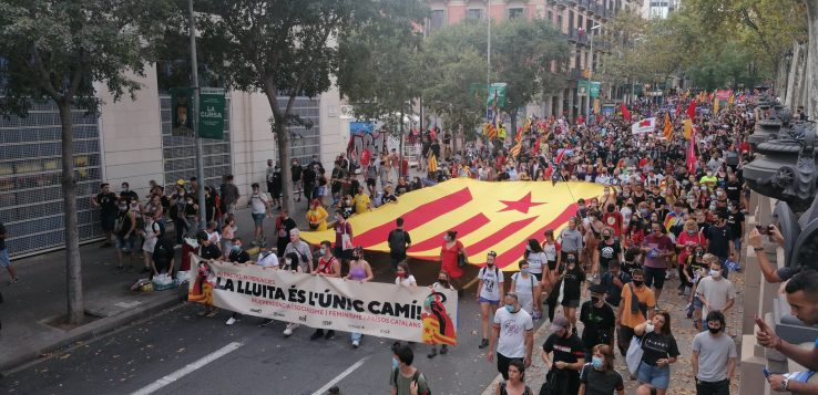 Espainiako indar faktikoengatik bereziki
