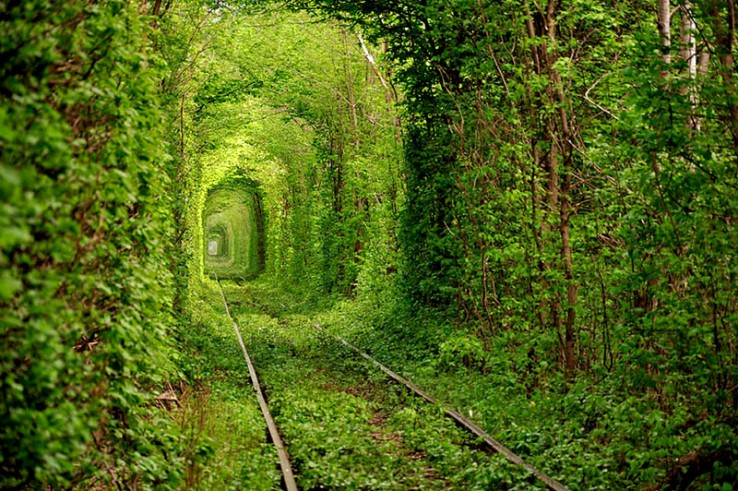 Tunnel of Love Railway (Ukrania)