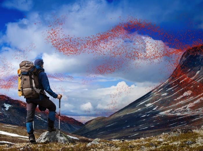 Kirol arroparekin bueltaka