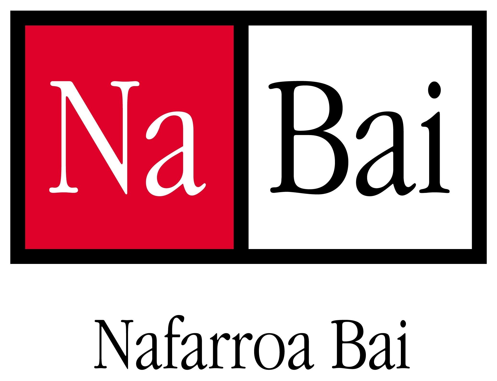 Nafarroa Bai: 2011ko hauteskundeetan zer?